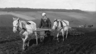 tolstoy-ploughing powells books