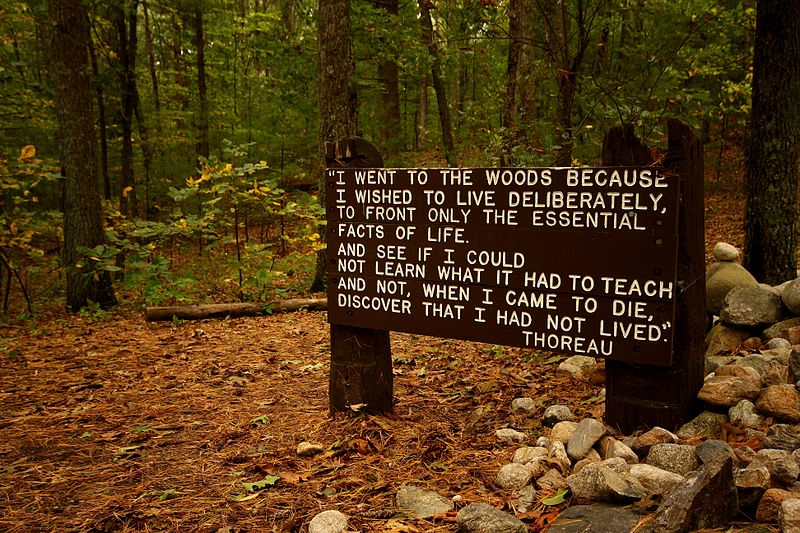 800px-Thoreaus_quote_near_his_cabin_site,_Walden_Pond