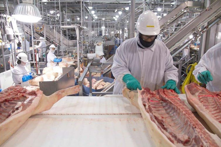 Workers in a pork processing plant, 2016. USGAO/Wikipedia